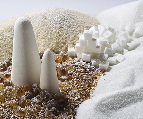 Putsch® Sweetener and Sugar Production